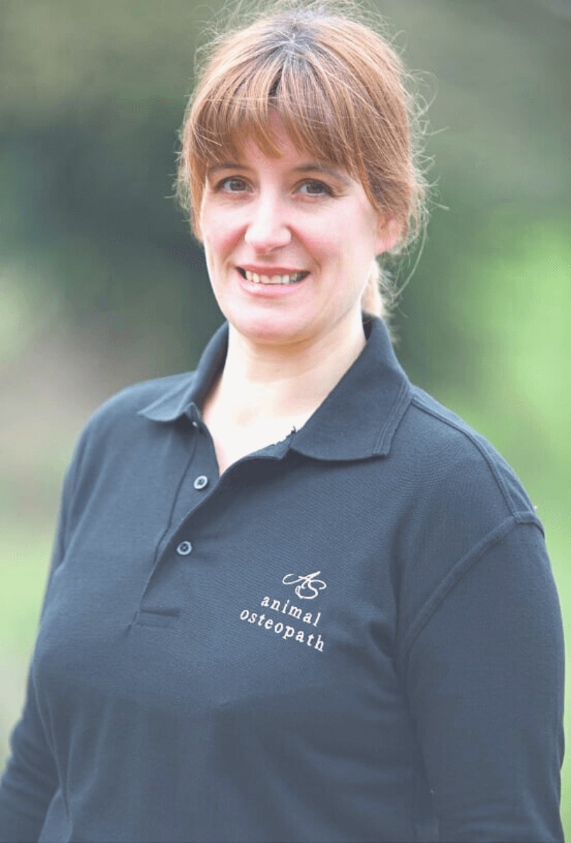Anna Shawcross an experienced osteopath in Graffham, West Sussex.